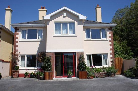Darcy 39 S B B Reviews Galway Ireland Tripadvisor