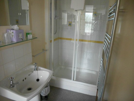 Five Rise Locks Hotel : Generously proportioned shower cubicle