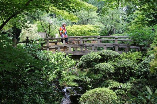 Spring Flowers Are In Full Bloom Picture Of Portland Japanese Garden Portland Tripadvisor