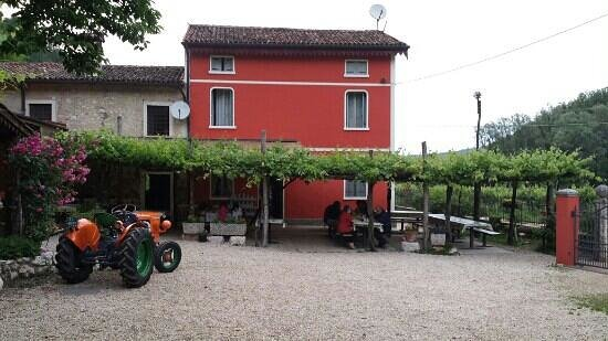 Countryside Farm Agriturismo very good. - Review of Dalla Pierina ...