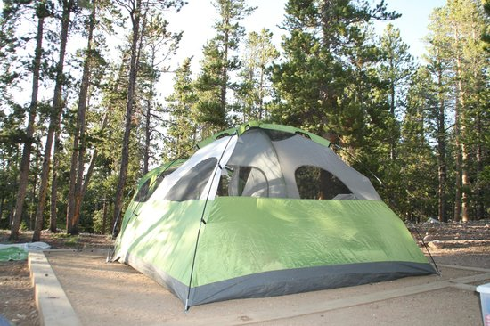Golden Gate Canyon State Park: Tent pad