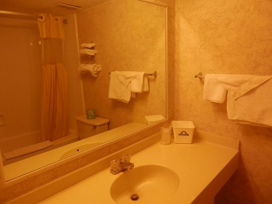 Days Inn Port Huron: bathroom