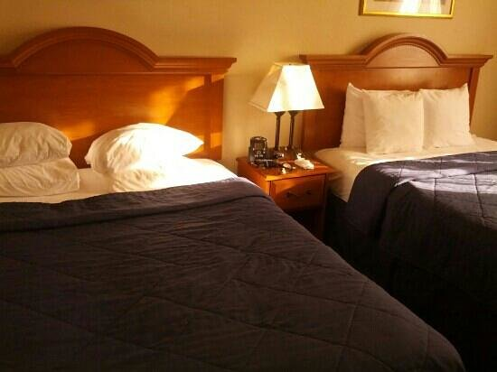 Comfort Inn JFK Airport: Two queen sized beds