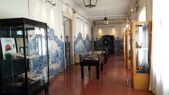 Museu Académico / Academic Museum