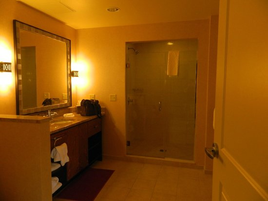 Hilton Promenade at Branson Landing: Shower area