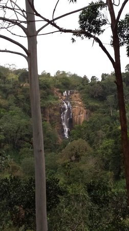 Waterfalls Homestay: Magical
