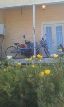 Coastal Dreams Bed & Breakfast: you can rent the bicycle built for two