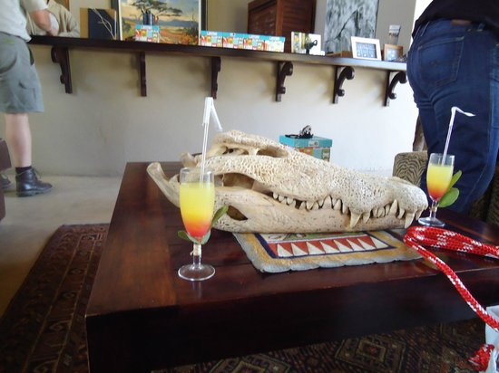 Simbavati River Lodge: Lobby with welcome beverage
