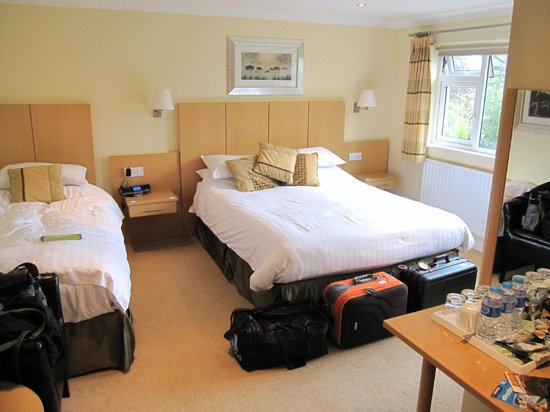 Lingwood Lodge : Room