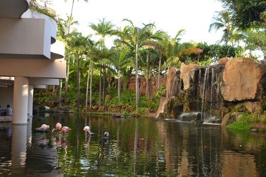 Westin Maui Resort And Spa: The lobby