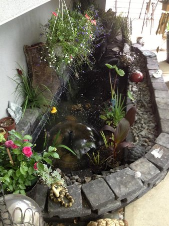 Along River Ridge: FISH POND