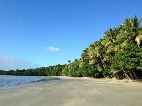 Cape Trib Camping: Beach