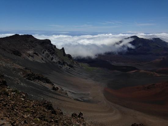 Foto de Gray Line - Polynesian Adventure Tours