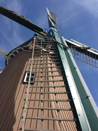 De Immigrant Windmill: De Immigrant close up