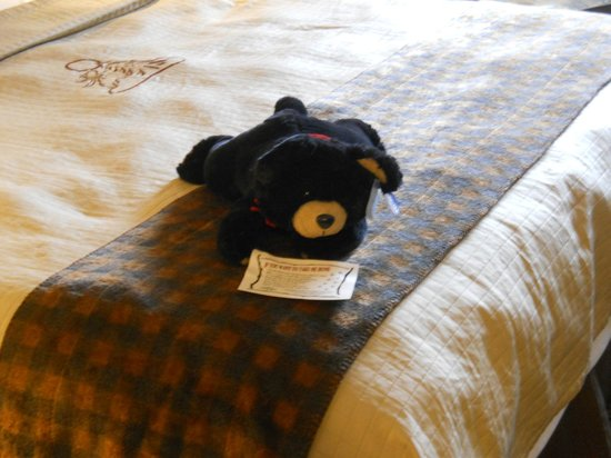 Stoney Creek Hotel and Conference Center - Des Moines: You can even buy the bear.