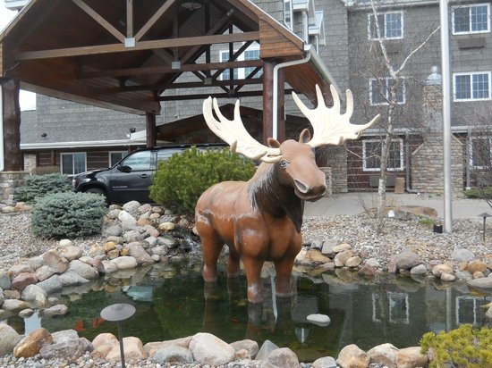 Stoney Creek Hotel and Conference Center - Des Moines: Moose in front of the hotel.