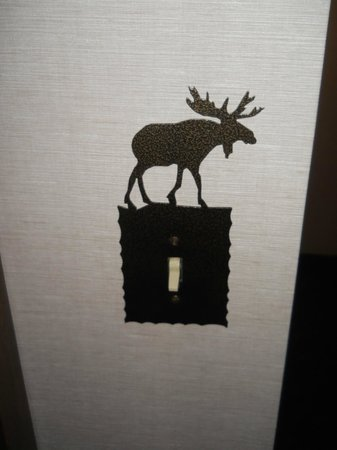 Stoney Creek Hotel and Conference Center - Des Moines: Light switch evoking lodge feel.