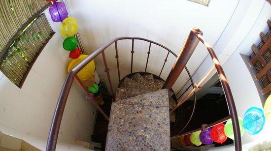 Casa de Las Bugambilias B&B: stair to rooftop's restaurant