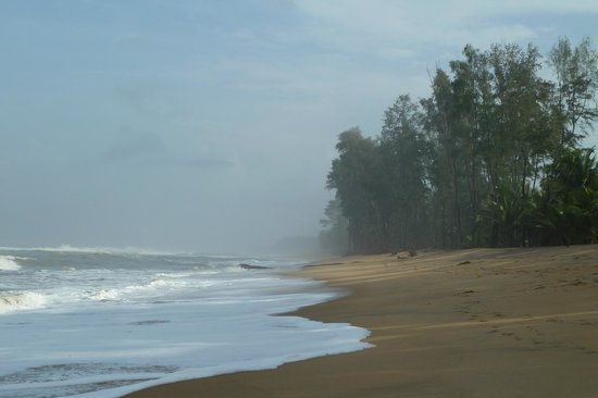 Bekal, India: Amazing view...tides touching the woods