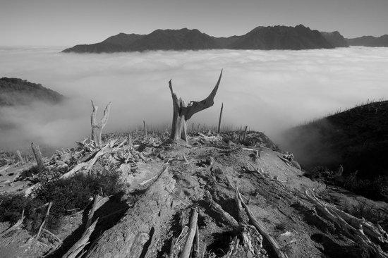 Pumalin Park: Chaiten Volcano
