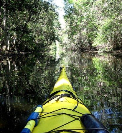 Florida Canoe