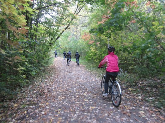 Toronto Bicycle Tours : Rolling off the beaten path...exploring one of the city's many ravine trails