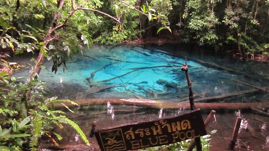 ... pool - Picture of Emerald Pool (Sa Morakot), Krabi Town - TripAdvisor
