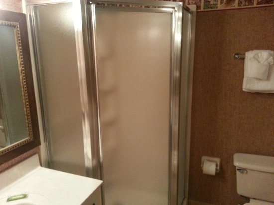 Parkway International Resort: Master Bath Stand Up Shower