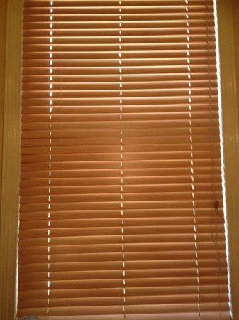 Mercure Altrincham Bowdon Hotel: No curtains just a blind