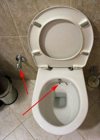 Best Western Empire Palace: Islamic toilet. Eeek.