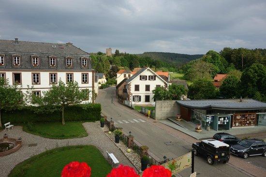 Parc Hotel Wangenbourg : vue depuis la chambre Prestige