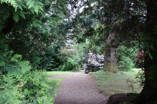 Parc Hotel Wangenbourg : parc