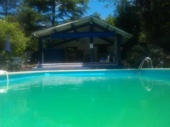 Green Horizons : Enjoying the pool