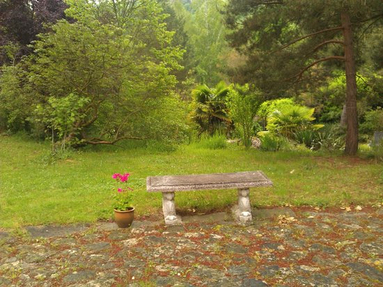 Green Horizons : A tranquil space to have a rest