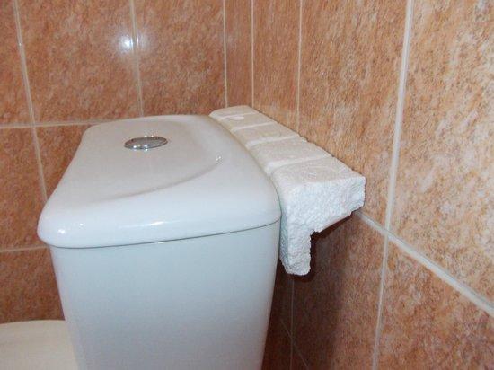 Ocean Reef Hotel: Room 10 bathroom cistern with polystyrene wedge