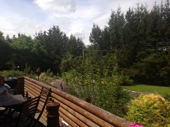 Beech Hedge Caravan Park