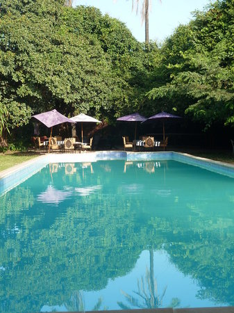 Suleima Lodge: Forest Pool