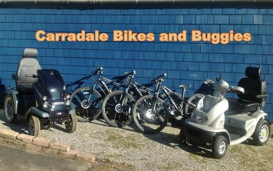 Carradale Bikes and Buggies: Line up of bikes and buggies
