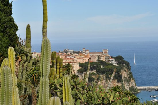 Panorama sulla rocca di monaco picture of exotic garden for Boulevard du jardin exotique monaco