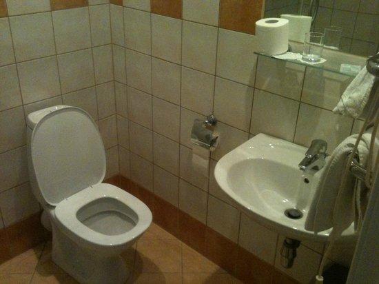 Hotel Sigulda: bathroom