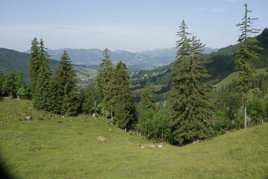 Kinderhotel Oberjoch: View of the valley
