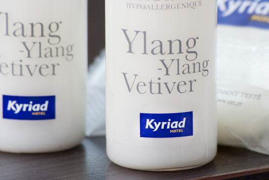 Kyriad Colmar Centre - Parc Des Expositions: salle de bain