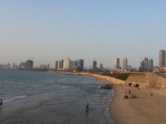 Orchid Tel Aviv: Tel Aviv
