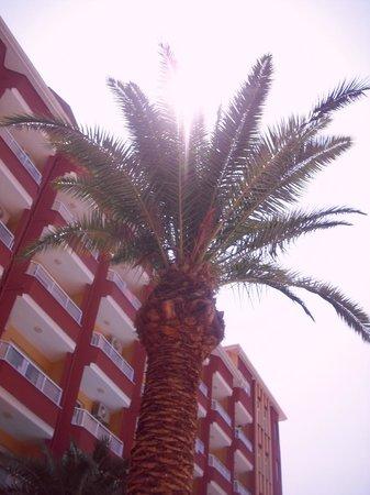 Vela Hotel Icmeler: Hotel