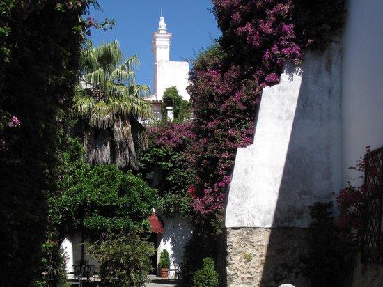 Hotel Sao Joao de Deus: Jardin