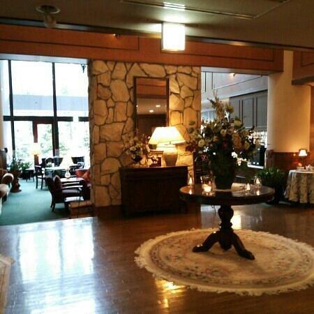 Hakuba Mominoki Hotel: ロビー