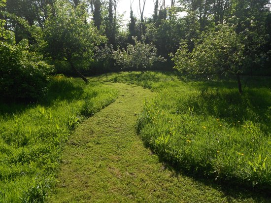 Holton, UK: The Orchard