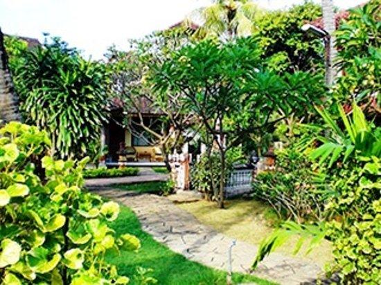 garden walk at Lovina Beach Hotel
