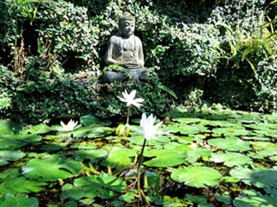 Budhha statue Lovina Beach Hotel