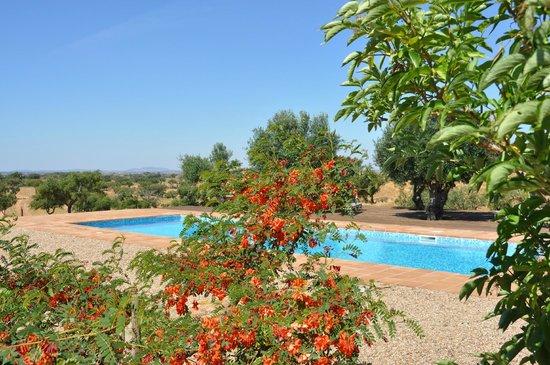 Cantar do Grilo: landscape